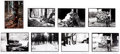 Photography:Official Photos, Lot of Eight 8 x 10 Black and White Photographs by David Mamet....(Total: 8 Items)