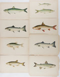 Books:Prints & Leaves, Group of Eight Antique Prints of Fish. Approximately 9.5 x 6.5inches. With occasional foxing, chipping along the edges, and...