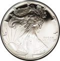 1995-W American Eagle 10th Anniversary Set of Proof Bullion Coins. Contains the runaway best-seller 1995-W proof silver...