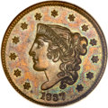 Proof Large Cents, 1837 1C PR63 Brown ANACS. N-6, R.8 as a Proof....