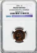 Proof Indian Cents, 1895 1C -- Environmental Damage -- NGC Details. PROOF. NGC Census:(0/293). PCGS Population (0/204)....
