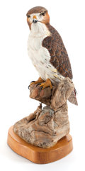 Sculpture, A BILL COITE (AMERICAN, 20TH CENTURY) CARVED FIGURED: RED TAIL HAWK. York Harbor, Maine, 20th century. Marks: Bill Coite, Y...