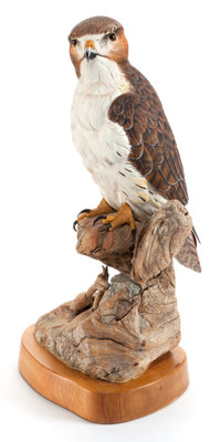A BILL COITE (AMERICAN, 20TH CENTURY) CARVED FIGURED: RED TAIL HAWK York Harbor, Maine, 20th century Marks: Bi