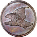Patterns, Undated P1C Flying Eagle Cent, Judd-179, Pollock-207, Low R.7, PR64Brown PCGS Secure. Snow-1858 PT1b. ...