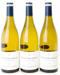 White Burgundy, Batard Montrachet 2004 . Fontaine-Gagnard . 1lbsl. Bottle(3). ... (Total: 3 Btls. )