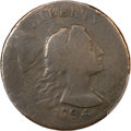Large Cents, 1794 1C Head of 1793 -- Environmental Damage -- PCGS Genuine. VGDetails. S-20b, B-4b, High R.4....