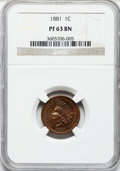 Proof Indian Cents: , 1881 1C PR63 Brown NGC. NGC Census: (12/62). PCGS Population(16/51). Mintage: 3,575. Numismedia Wsl. Price for problem fre...