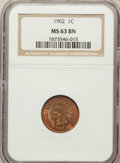Indian Cents: , 1902 1C MS63 Brown NGC. NGC Census: (164/400). PCGS Population(60/76). Mintage: 87,376,720. Numismedia Wsl. Price for prob...