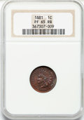 Proof Indian Cents: , 1881 1C PR65 Red and Brown NGC. NGC Census: (152/88). PCGS Population (83/21). Mintage: 3,575. Numismedia Wsl. Price for pr...