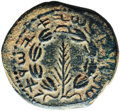Ancients:Judaea, Ancients: Bar Kokhba Revolt. AD 132-135. AE middle bronze (25mm,11.16 gm, 12h). ...