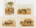 Books:Natural History Books & Prints, [Natural History Prints]. Four Lithographed Color Plates of African Quadrupeds. Extracted from volume one of Richard Lydekke...