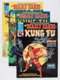 Magazines:Miscellaneous, The Deadly Hands of Kung Fu Group (Marvel, 1974-76) Condition: Average VF.... (Total: 29 Comic Books)