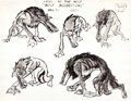 animation art:Model Sheet, Make Mine Music Peter and the Wolf Character Model Sheet (Walt Disney, 1946)....