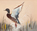 "Mainstream Illustration, DONALD ""RUSTY"" RUST (American, b. 1932). Duck in Flight,1995. Oil on canvas. 20 x 24 in.. Signed lower right. ..."