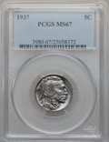 Buffalo Nickels: , 1937 5C MS67 PCGS. PCGS Population (311/5). NGC Census: (349/4).Mintage: 79,485,768. Numismedia Wsl. Price for problem fre...