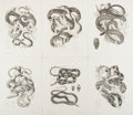 Books:Prints & Leaves, [Snakes]. Group of Six 19th Century Lithographic Prints. Approx.12.25 x 9.5 inches. Very good....