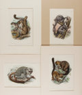 Books:Prints & Leaves, [Lemurs]. Group of Four 19th Century Prints with Hand-Coloring.Approx. 5.75 x 8.5 inches. Matted. Very good....