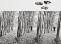 Photographs, JERRY UELSMANN (American, b. 1934). Peanut Parable, 1970. Vintage gelatin silver. 10 x 13-5/8 inches (25.4 x 34.6 cm). I...