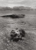 Photographs:20th Century, JERRY UELSMANN (American, b. 1934). Untitled, 1969. Vintagegelatin silver. 8-7/8 x 6-1/2 inches (22.5 x 16.5 cm). Initi...