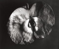 Photographs:20th Century, BERENICE ABBOTT (American, 1898-1991). Apple,Supersight, circa 1940. Gelatin silver, circa 1970. 14 x16-1/2 inches...