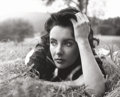 Photographs:20th Century, PETER BASCH (German/American, 1921-2004). Elizabeth Taylor, fromthe set of 'Giant', Virginia, Plantation, 1956. Gelatin...