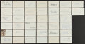 Baseball Collectibles:Others, Baseball Stars Signed Index Cards Lot of 38....