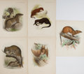 Books:Prints & Leaves, [Animals]. Group of Five 19th Century Prints, Some with Hand-Coloring. Approx. 12 x 9.25 inches. Very good....