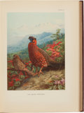 Books:Natural History Books & Prints, William Beebe. A Monograph of the Pheasants. London: Published Under the Auspices of the the New York Zoological Soc... (Total: 4 Items)