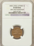 Flying Eagle Cents, 1858 1C Large Letters -- Obv Spot Removed -- NGC Details. XF. NGCCensus: (0/177). PCGS Population (110/1626). Mintage: 24,...