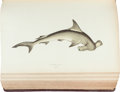 Books:Natural History Books & Prints, Jonathan Couch. A History of the Fishes of the BritishIslands. London: George Bell, 1877-1878. With 252chromolitho... (Total: 4 Items)