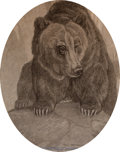 Art:Illustration Art - Mainstream, Paul Bransom. Portrait of a Bear. Charcoal on board. Measures 17.5 x 14 inches. Signed lower right.. ...