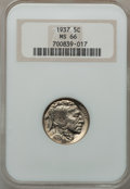 Buffalo Nickels: , 1937 5C MS66 NGC. NGC Census: (4170/392). PCGS Population(3552/316). Mintage: 79,485,768. Numismedia Wsl. Price forproble...
