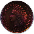 Proof Indian Cents: , 1881 1C PR65 Red and Brown PCGS. PCGS Population (84/25). NGCCensus: (77/43). Mintage: 3,575. Numismedia Wsl. Price for pr...