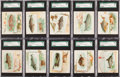 "Non-Sport Cards:Sets, 1889 N39 Allen & Ginter ""50 Fish from American Waters"" PartialSet (25/50). ..."