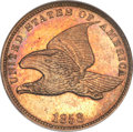 Patterns, 1858 P1C Flying Eagle Cent, Judd-192, Pollock-235, Snow-PT13, R.5,PR66 NGC....