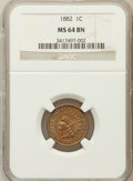 Indian Cents: , 1882 1C MS64 Brown NGC. NGC Census: (99/84). PCGS Population(50/27). Mintage: 38,581,100. Numismedia Wsl. Price for proble...