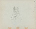 Animation Art:Production Drawing, Sleeping Beauty Briar Rose Animation Production DrawingOriginal Art (Walt Disney, 1959)....