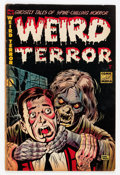 Golden Age (1938-1955):Horror, Weird Terror #4 (Comic Media, 1953) Condition: VG....