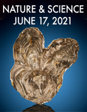 Catalog cover for 2021 June 17 Nature & Science Signature Auction