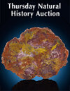 Thursday Natural History Weekly Online Auction